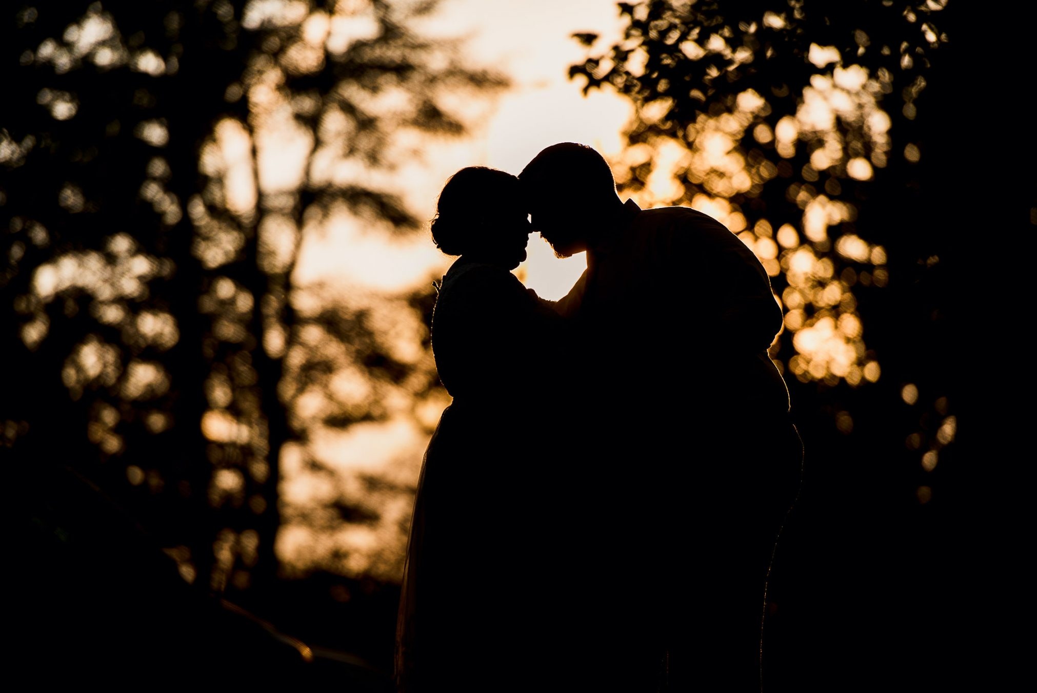 bride and groom silhouette in woods