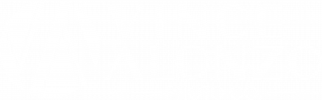 Vince Alonzo Photo Co.